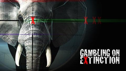 Gambling on operadora de gambling s.a.de c.v